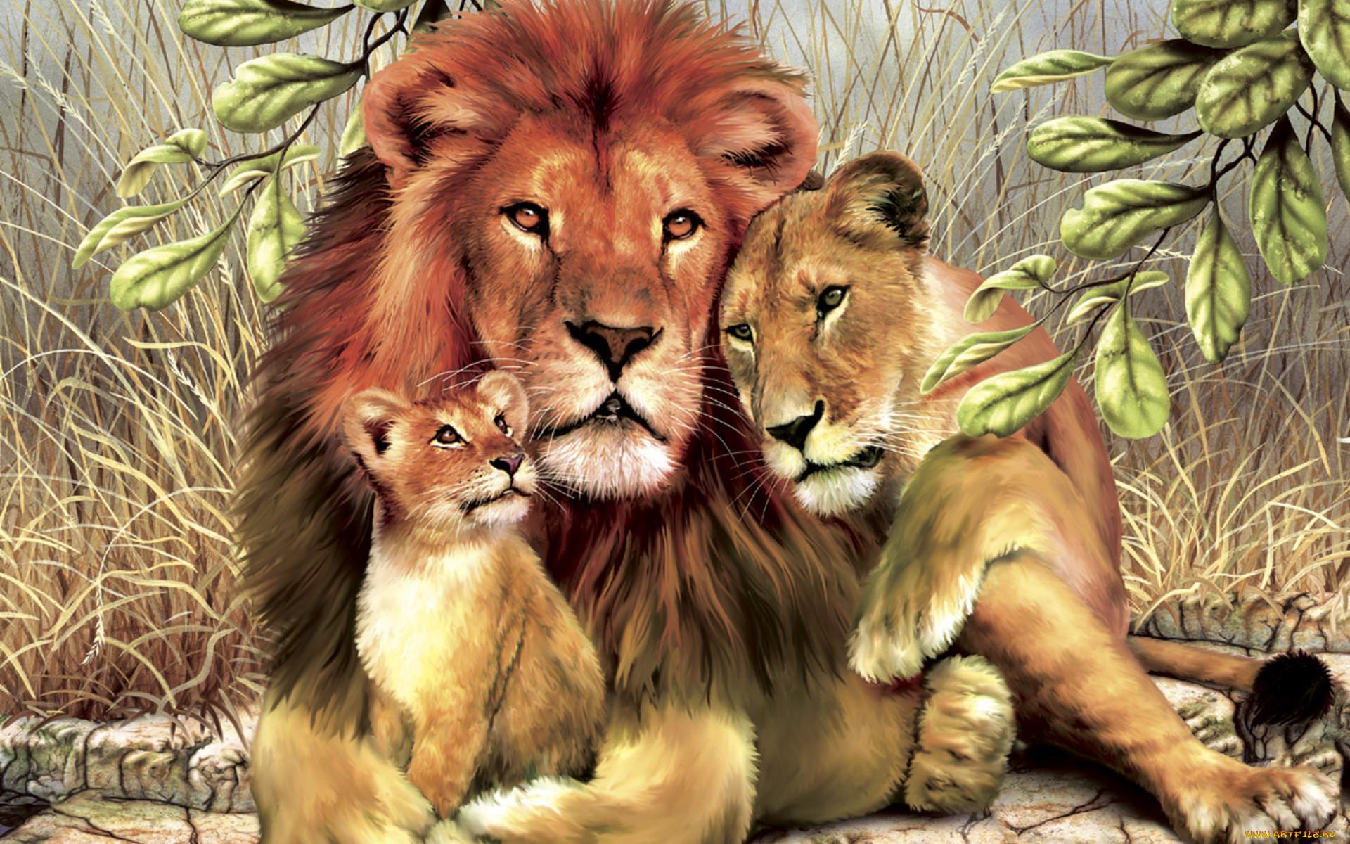 цвет всех картинки про львов семейство львов ажурными листьями красивыми